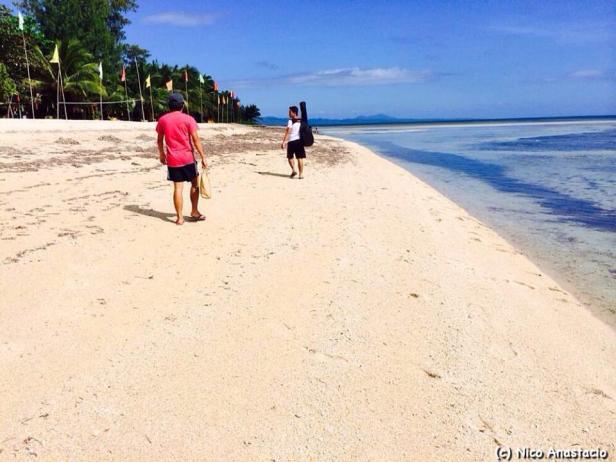 A walk along the shoreline of the island.