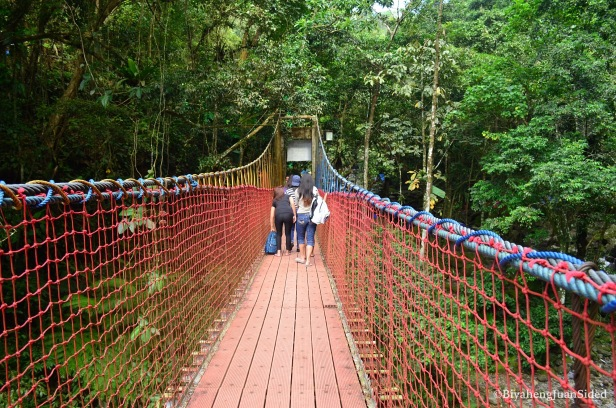the hanging bridge inside the eco park