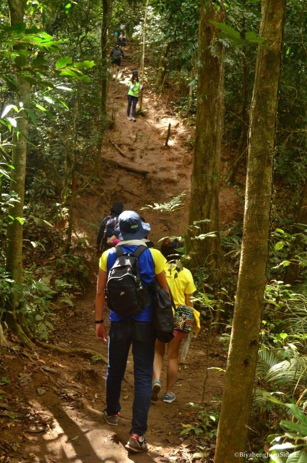 a very steep muddy trail