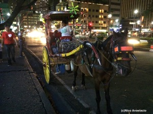 A horse carriage near Luneta Park