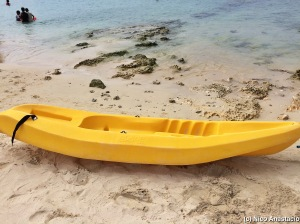 a kayak resting along the shore
