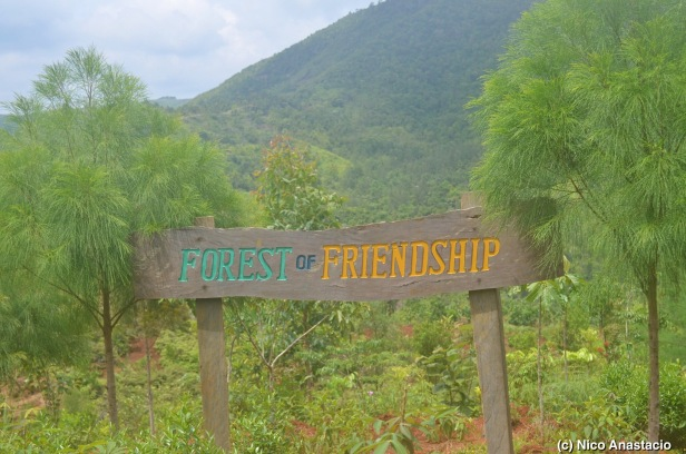 The signage of the forest of freindship