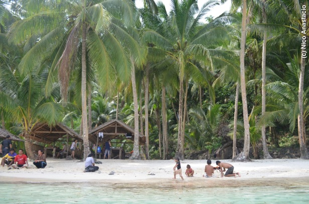 Bitaog Beach's white sand and coconut trees