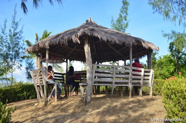 The Nipa Hut on the Paniog Hill