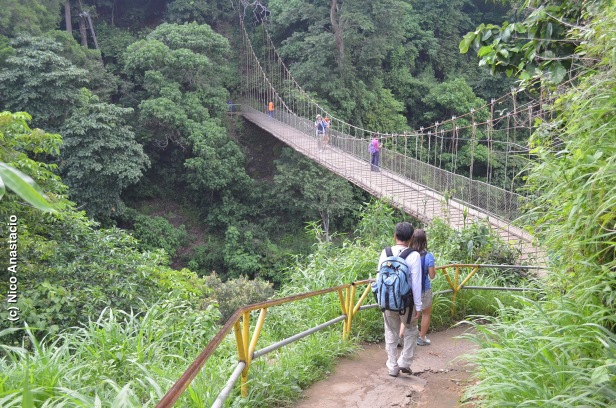 the hanging bridge which is in the initial portion of  the trail