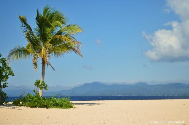 the vegetated part of Hagonoy island