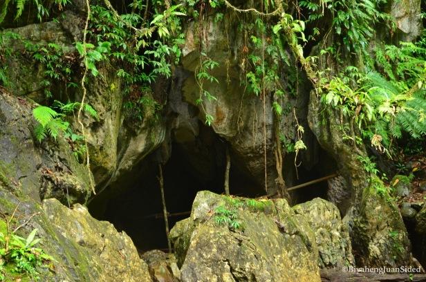 an ecotourism study tour, October 26, 2015