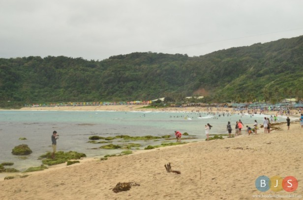 the numerous visitors along the beach