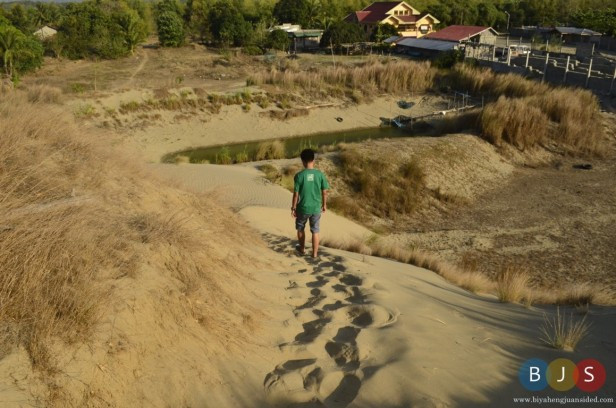 Dry grassy sand dunes of Paoay
