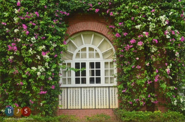 a window in Fort Ilocandia